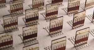 vernicisolari1 04 08 14 300x160 - Vernici con celle solari in arrivo