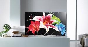 lg evi 04 12 2014 300x160 - LG amplierà la gamma TV OLED nel 2015