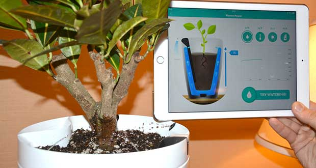 "parrot1 05 01 14 - Parrot Pot e H2O: vaso ""smart"" e sensore piante"