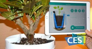 "parrot evi 05 01 14 300x160 - Parrot Pot e H2O: vaso ""smart"" e sensore piante"