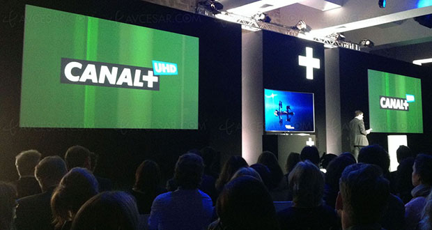 canal  uhd 10 06 2015 - Canal+ lancerà un canale Ultra HD nel 2016
