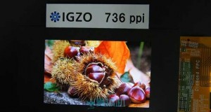 sharp igzo evi 07 12 15 300x160 - Sharp: nuovi display Super IGZO per smartphone e tablet