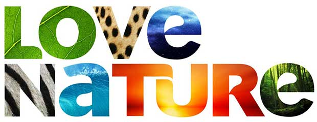 lovenature1 26 02 16 - Love Nature: servizio streaming 4K Ultra HD per documentari