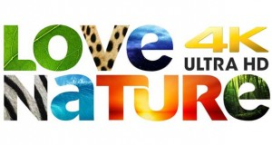 lovenature evi 26 02 16 300x160 - Love Nature: servizio streaming 4K Ultra HD per documentari