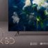 samsung q8dn evi 70x70 - Samsung Q8DN: TV QLED Full LED disponibili in Italia