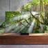 """samsung q950ts evi 07 01 20 70x70 - Samsung Q950TS: TV 8K QLED """"senza cornici"""" e con codec AV1"""