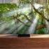 Samsung qled2020 evi 20 04 20 70x70 - Samsung QLED TV 2020: tutti i dettagli 8K e 4K con i prezzi