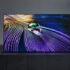 """sony oled 2021 evi 08 01 21 70x70 - Sony OLED TV XR A90J e A80J: fino a 83"""", HDMI 2.1 e pannelli più luminosi"""